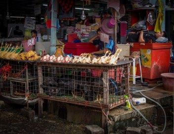 Food Market, Bangkok, Thailand (IMG_6211)