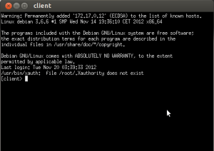 xterm of client VM from cloonix network simulator lab demo