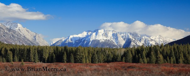 Landscape Photography on the Banff Bow Valley Parkway at Moose Meadows