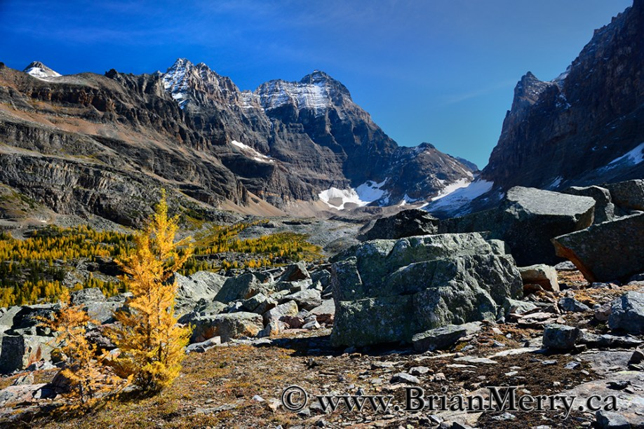 Beautiful Opabin Plateau in Lake O'Hara