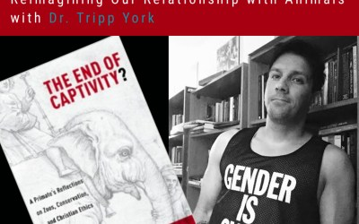 16: Reimagining Our Relationship with Animals, with Tripp York | Reimagining Podcast | Episode 16