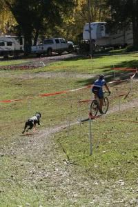 http://angysnoop.smugmug.com/2014-Cycling/Bobbers-Cross-Womens-Open/