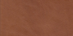 Leather #4116