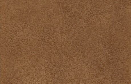 Leather #3312