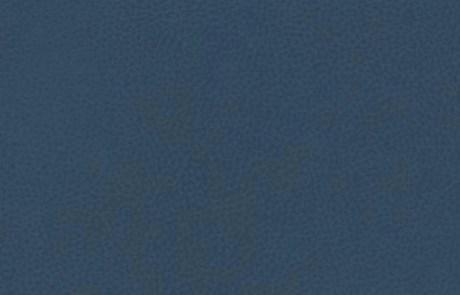 Brisa Blue Sea