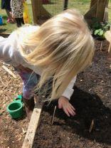 More planting 4
