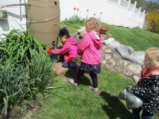 spring planting 3