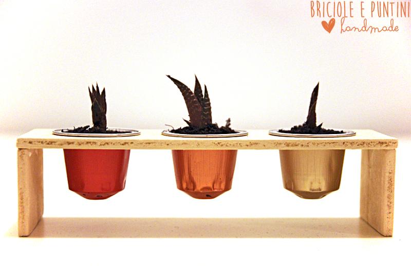 riciclo creativo delle capsule del caffè - vasetti per piante grasse