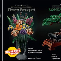 Lego 10280 Flower Bouquet 及 Lego 10281 Bonsai Tree 出現在法國 Lego Catalog 1月正式上市