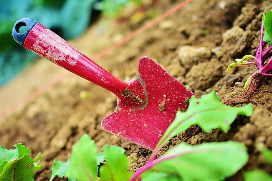 Les avantages de solliciter un jardinier professionnel