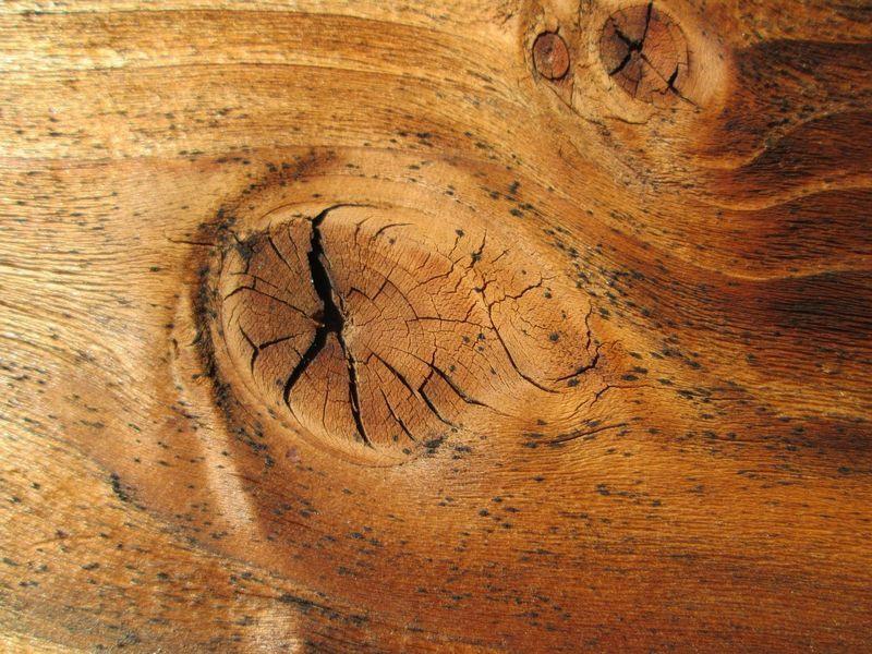 cómo preparar la madera con nudos y hongos