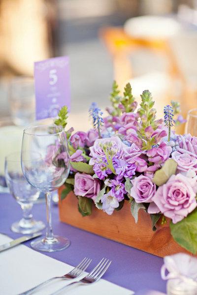 orchid purple modern rustic flowers