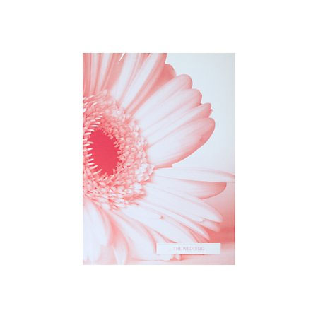 Pink Gerbera Floral Wedding Invitation