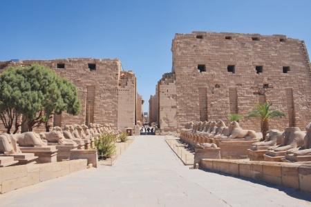 Visite du Temple de Karnak