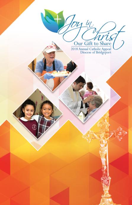 2018 ACA Brochure pdf