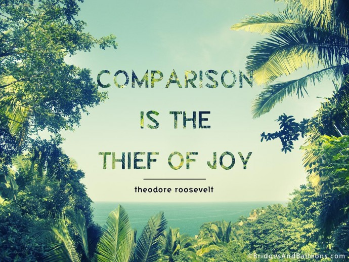 Comparison is the thief of Joy Roosevelt