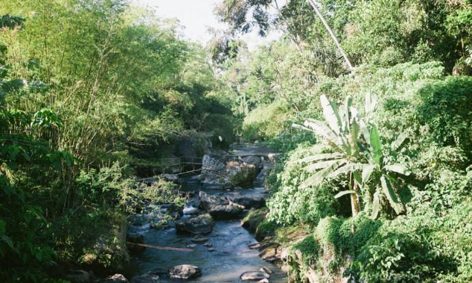 Green school view from bridge