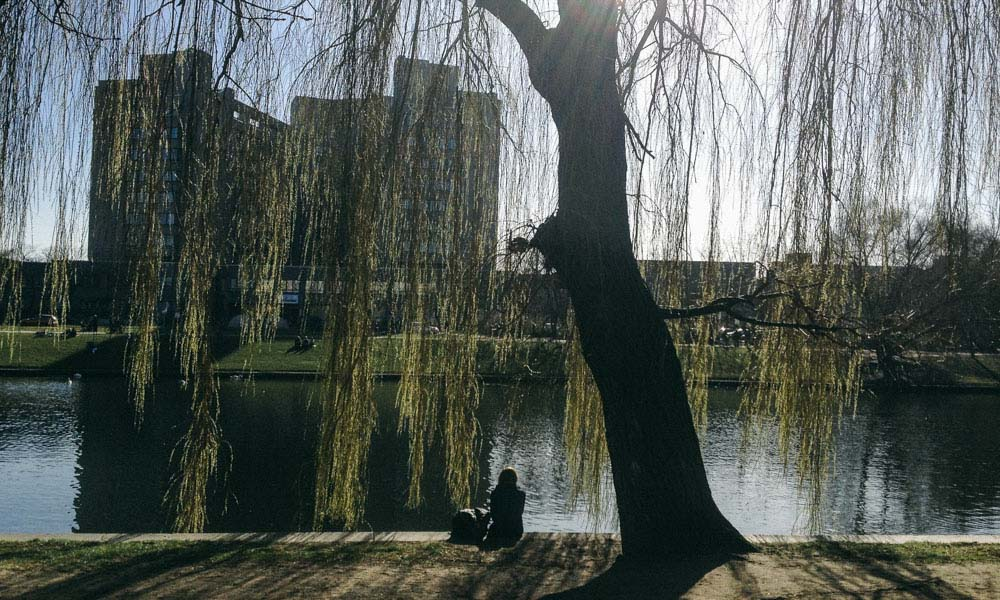 Person reading by the Landwehr Kanal