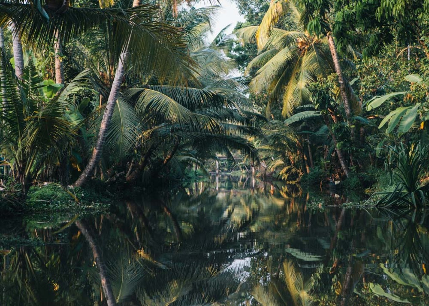 Kerala backwaters boat trip palms reflected in water