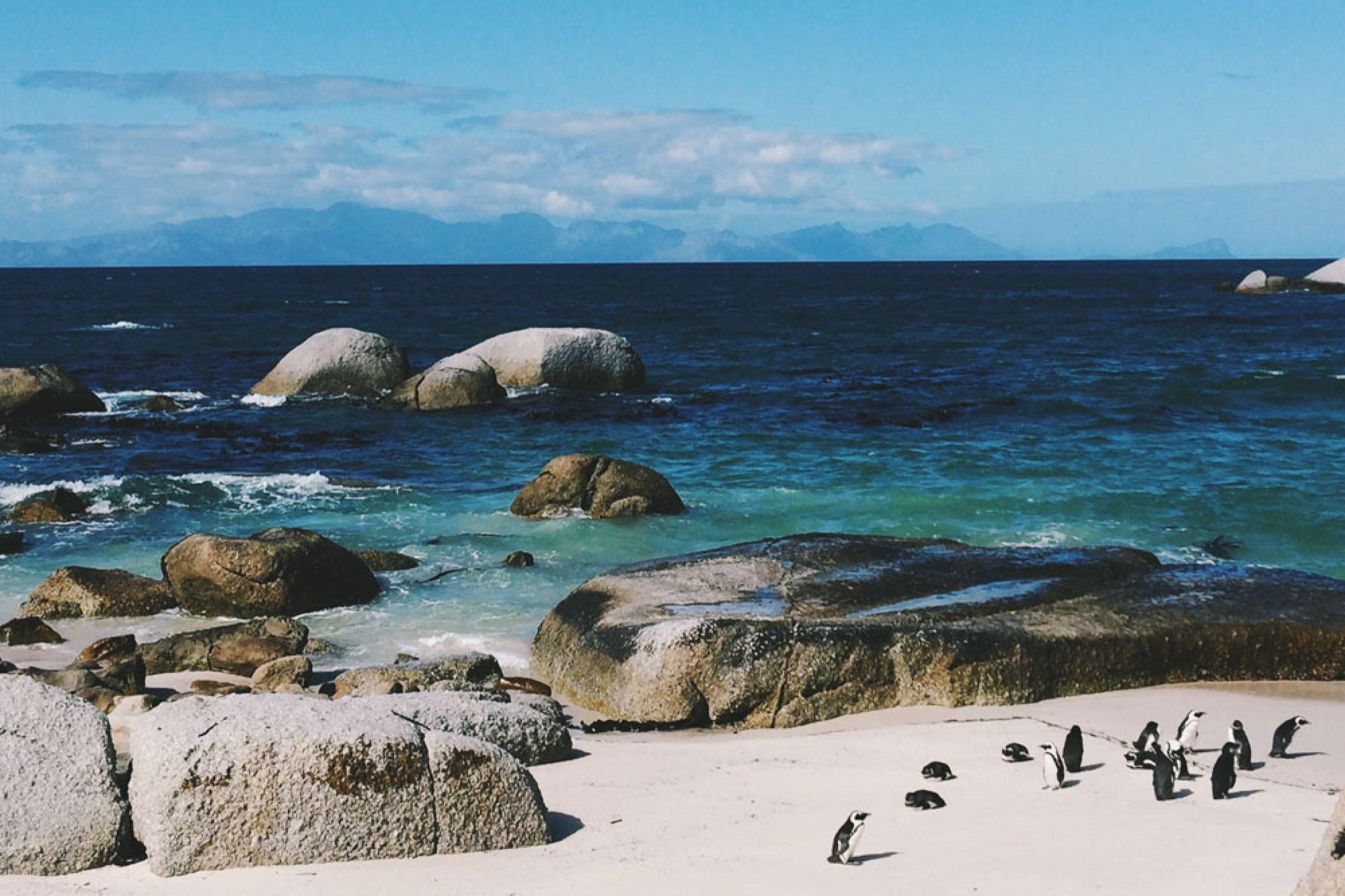 South Africa Honeymoon tips