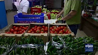 A Day In The Life Of Jerusalem Food Bank