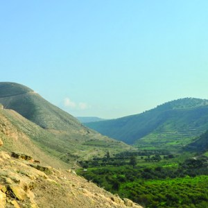 IDF soldiers training among the beautiful hillsides of the Golan Heights, Regional Brigade of the Golan Heights.
