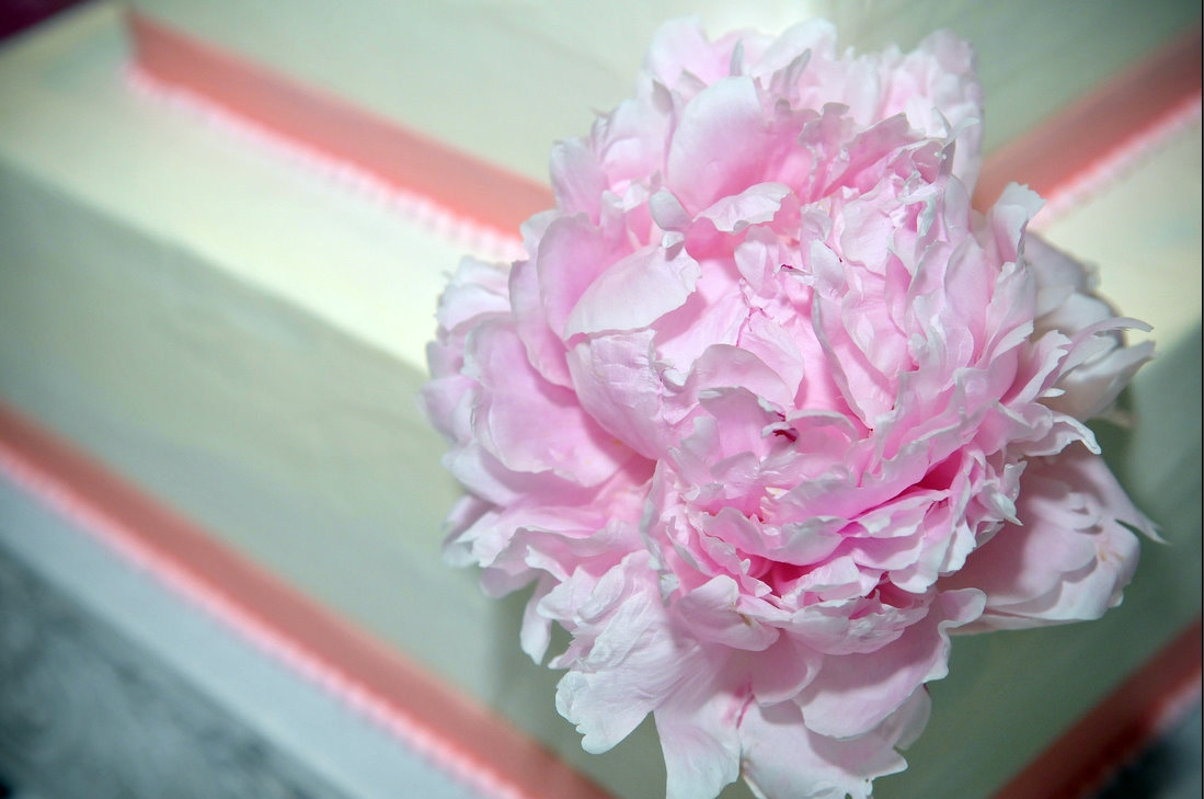 Pink Peonies Wedding Flowers For Shannons Wedding
