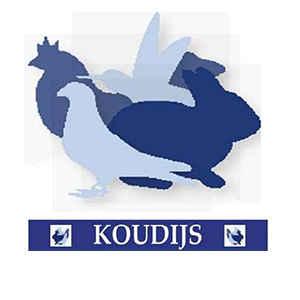 Koudijs Rauchtablette