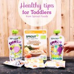 Healthy Tips for Toddlers from Sprout Foods