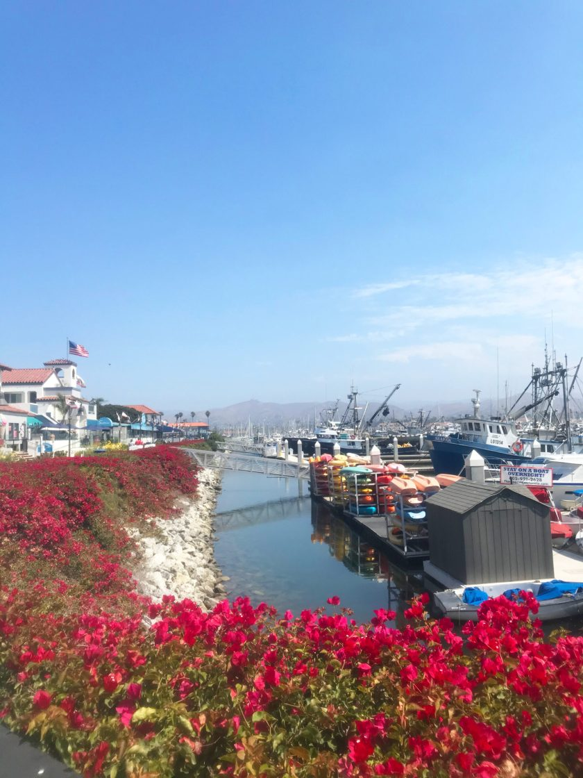 Shops and Harbor in Ventura