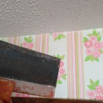 Tools and Tips for Scraping Ceilings
