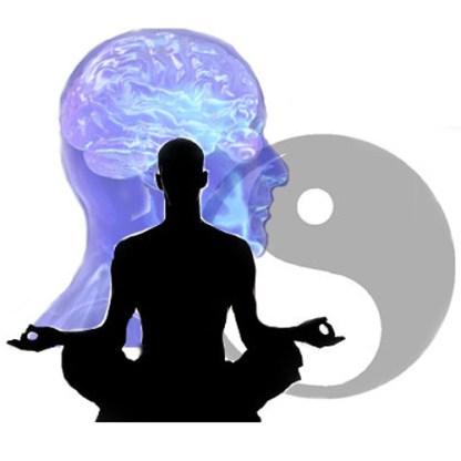 body mind analysis online training course brighton holistics