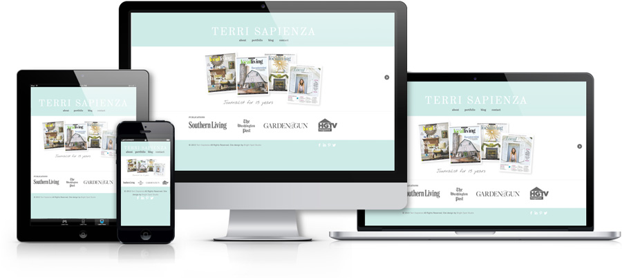 Terri Sapienza website by Tippi Thole of Bright Spot Studio