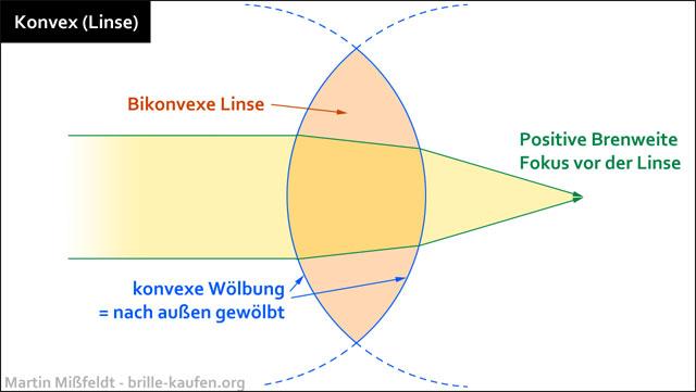 konvex gewölbt