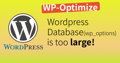 WordPress database is too large