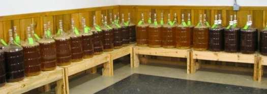 Mountain Dragon Mazery fermentation room