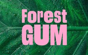 Forest Gum Logo auf Blatt
