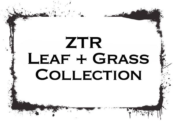 ZTR Collection Survey - New Product Development Surveys