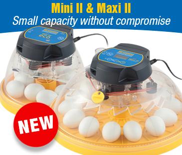 Image result for Brinsea Mini II Advance Hatching Egg Incubator