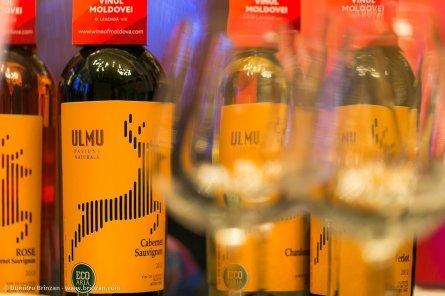 vernisajul-vinului-vii-69