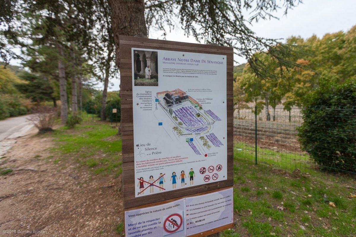 senanque-abbey-provence-france-2