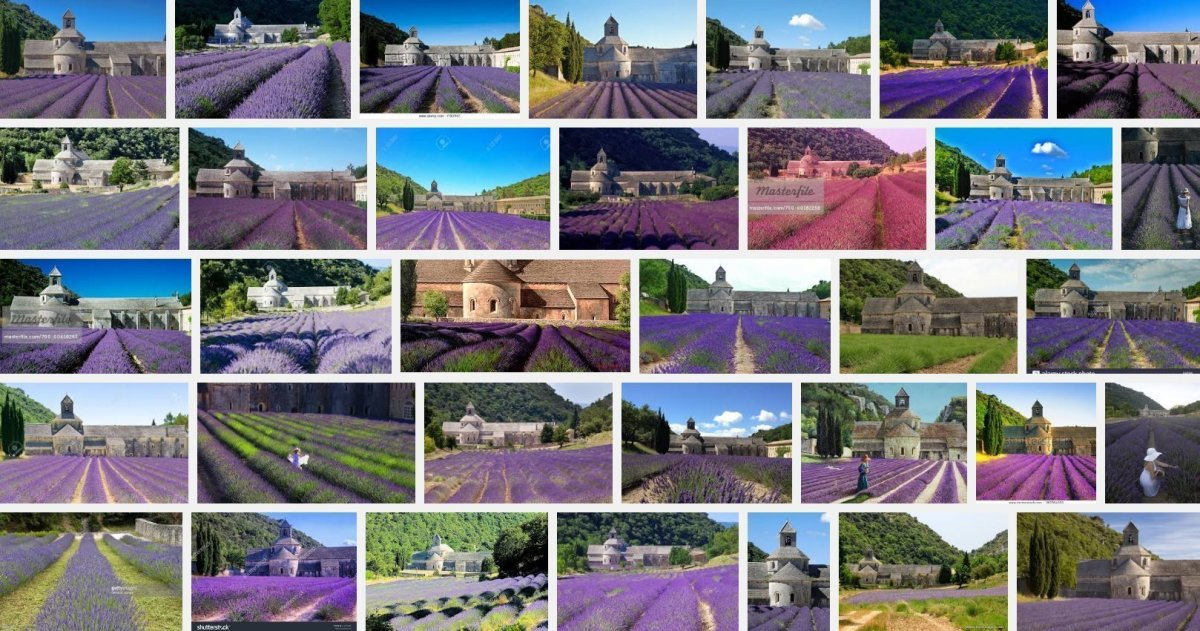 senanque-abbey-provence-france-lavender-fields-google-images