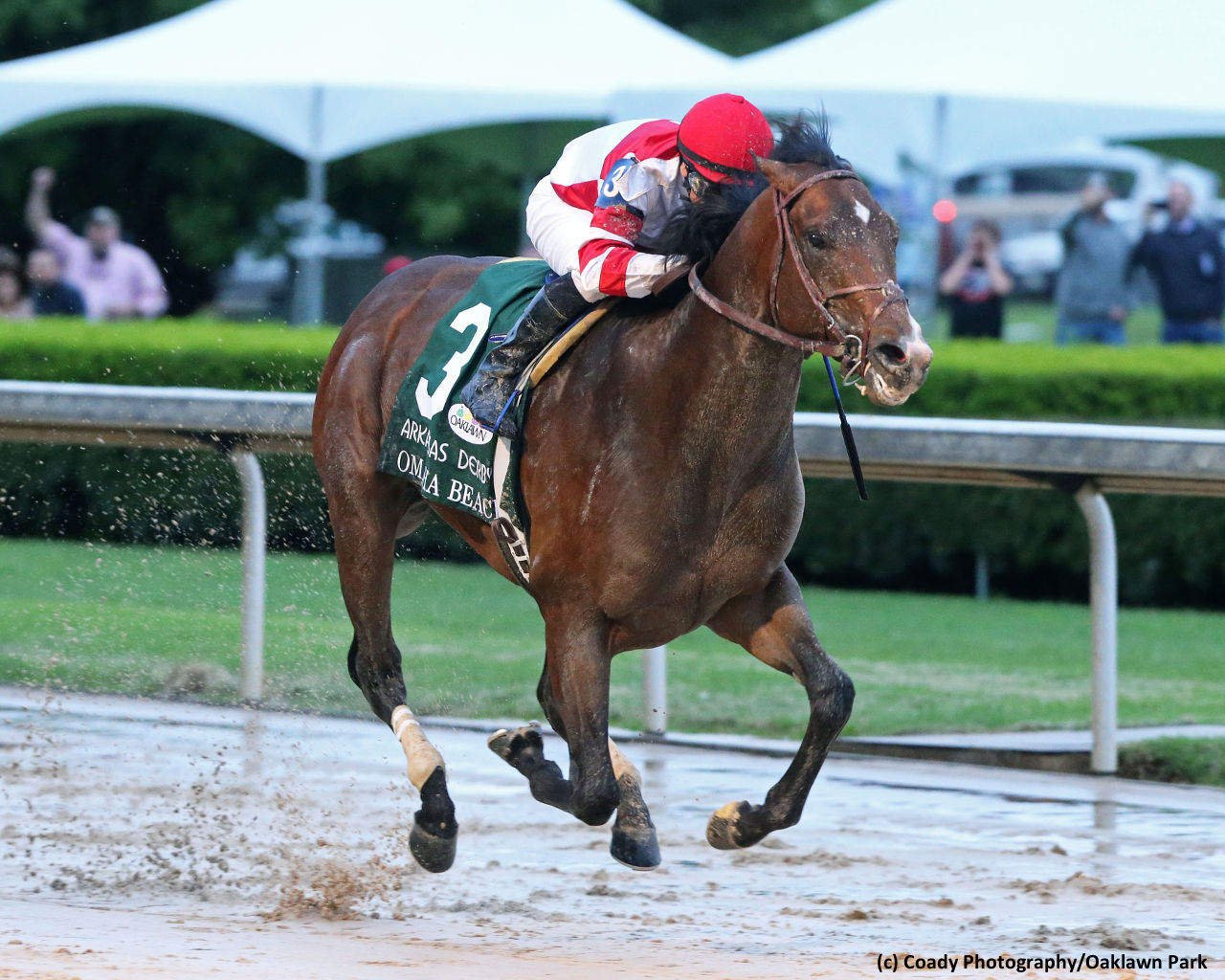 Kentucky Derby Report Omaha Beach Continues To Surge