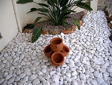 brispedra exemplos decorativos para jardim rolada