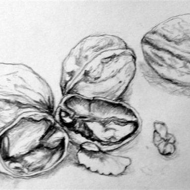 Drawing Summer School