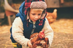 boy with chicken farm