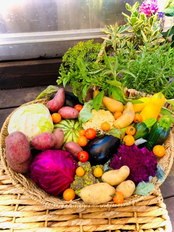 Vegetable Share-Beyond Organic (One Time Order)