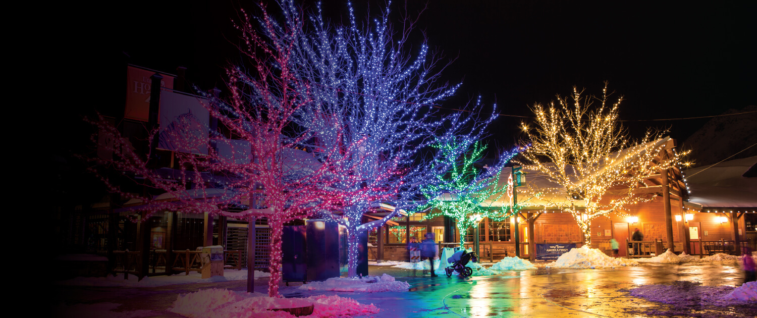Zoo Lights Hours Chicago