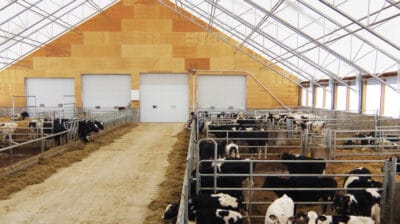 Agriculture Buildings - Dairy Cattle Barn