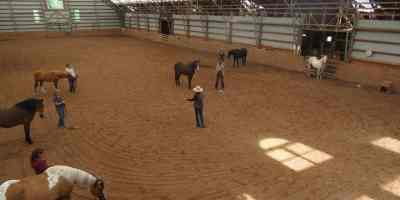 Leveraging Your Equine Operations Year-Round